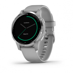 Garmin Vivoactive 4S Grey with silver Hardware