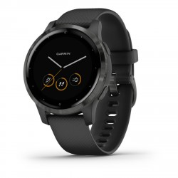 Garmin Vivoactive 4S Black with Gray Buckle