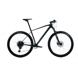 MENDIZ X21 Gray Bicycle